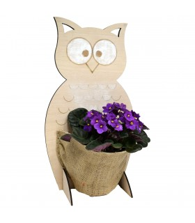 Medium Wooden Owl with Pocket